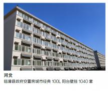 河北临漳县政府安置房